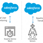 Real User Monitoring And Synthetic For Salesforce